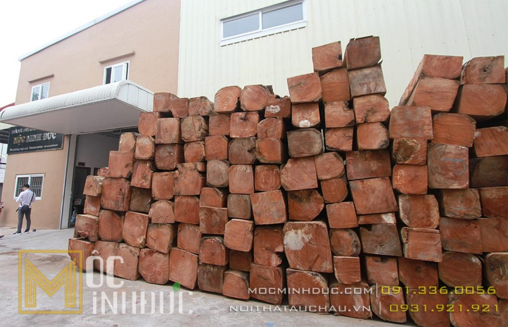 Hình ảnh tập kết gỗ gõ đỏ tại Mộc Minh Đức