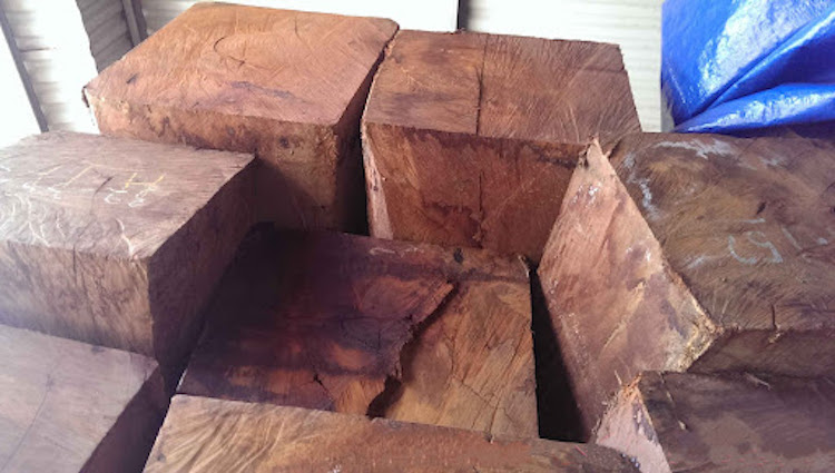 gỗ giáng hương có mấy loại