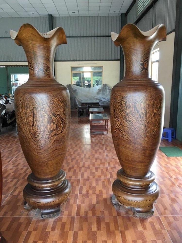 lục bình gỗ đuôi công