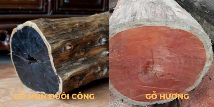 gỗ mun đuôi công và gỗ hương